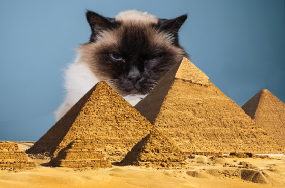 Egypt-Cat-cover-1.png
